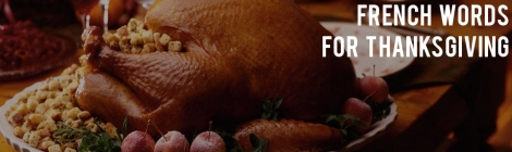 thanksgiving vocab